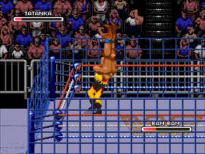 wwf rage cage