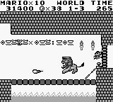 Super Mario Land mariolion
